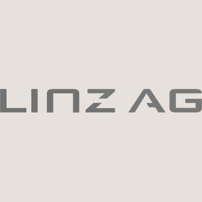 LinzAg Logo